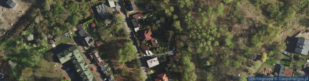 Zdjęcie satelitarne Jaworowa 9