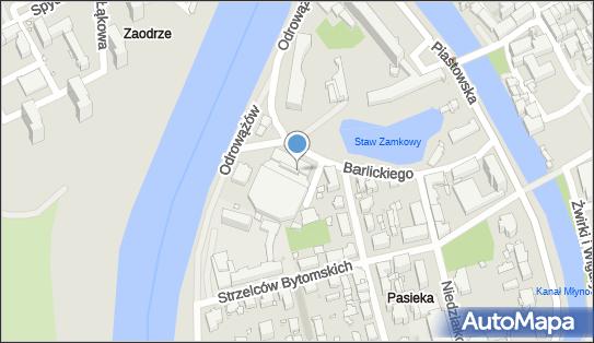 Lodowisko Toropol, Opole, Norberta Barlickiego 13  - Lodowisko