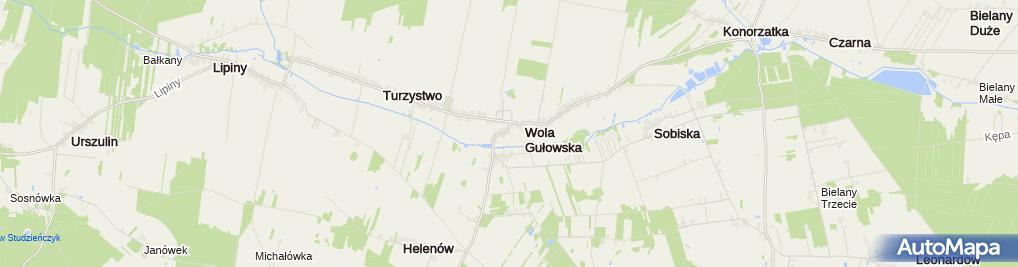 Zdjęcie satelitarne Dom Kultury
