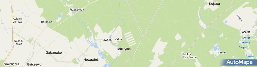 Zdjęcie satelitarne Szkółka leśna