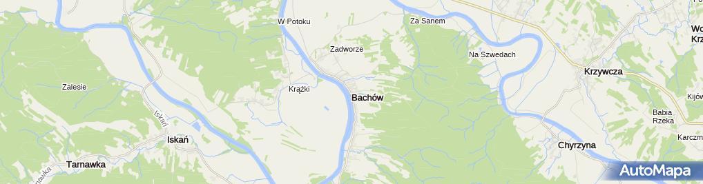 Zdjęcie satelitarne Bachów