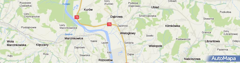 Zdjęcie satelitarne Wielogłowy (województwo małopolskie)