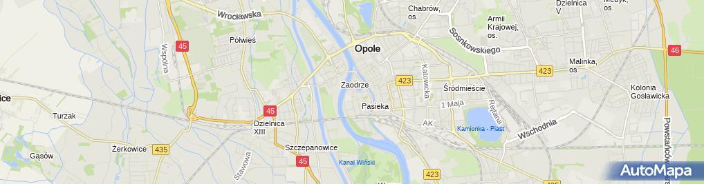 Zdjęcie satelitarne Lodowisko Toropol