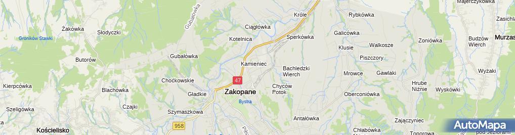 Zdjęcie satelitarne Gąsienica Samek Władysław
