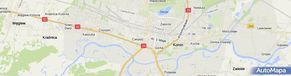 Zdjęcie satelitarne Turysta