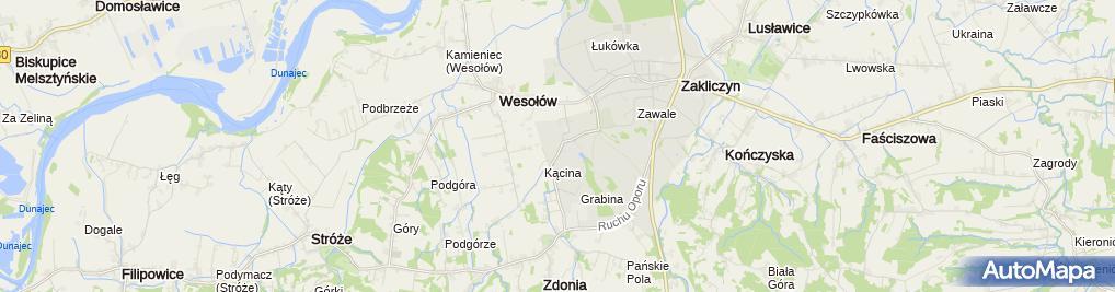 Zdjęcie satelitarne Targowica