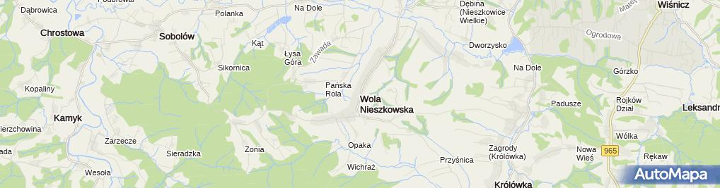Zdjęcie satelitarne Wyciąg Wola