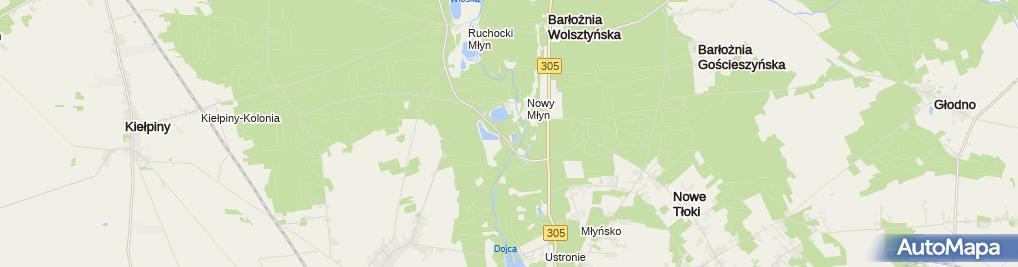 Zdjęcie satelitarne Chorzemin-palac