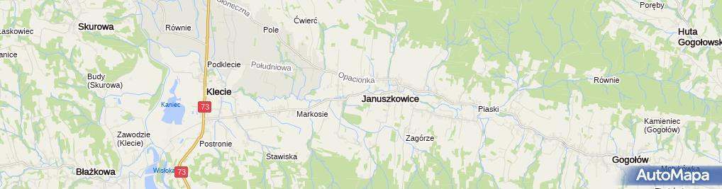 Zdjęcie satelitarne Dąb w Januszkowicach 2