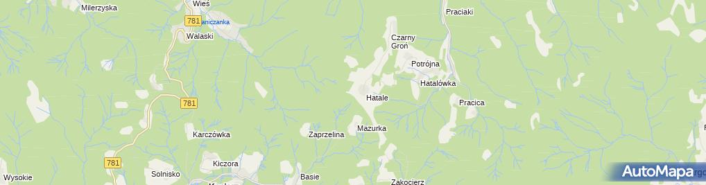 Zdjęcie satelitarne Potrójna z lotu ptaka