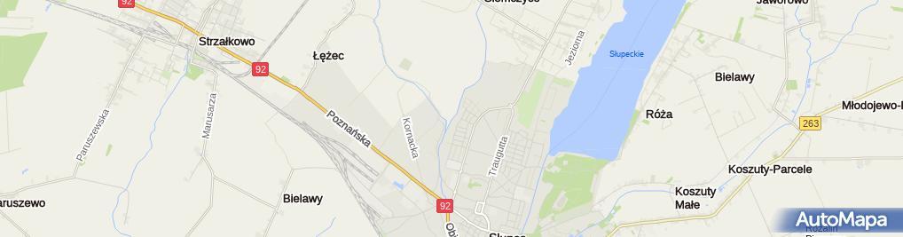 Zdjęcie satelitarne Slupca - targowisko miejskie