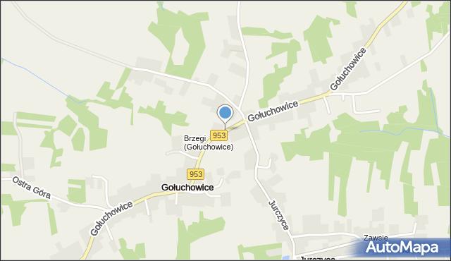 Gołuchowice, Gołuchowice, mapa Gołuchowice