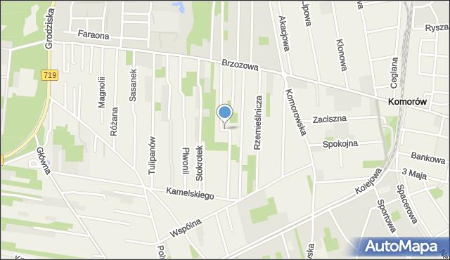 Nowa Wieś, Gwiaździsta, mapa Nowa Wieś