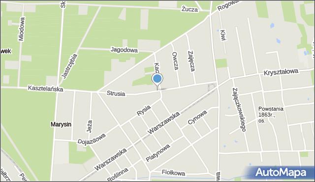 Łódź, Strusia, mapa Łodzi