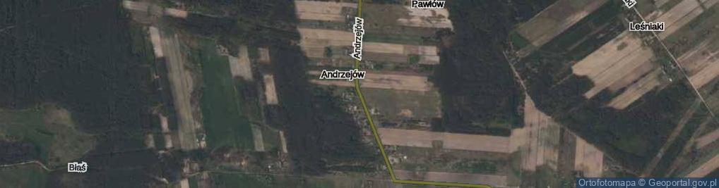 Zdjęcie satelitarne Andrzejów