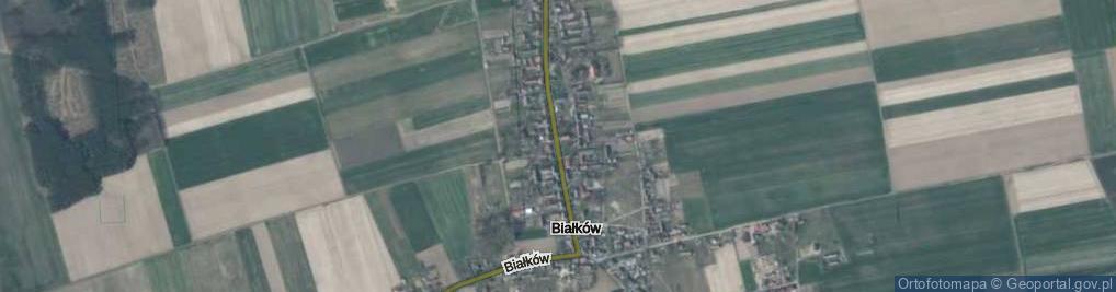 Zdjęcie satelitarne Białków ul.