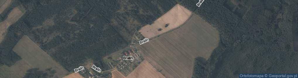 Zdjęcie satelitarne Bralin ul.