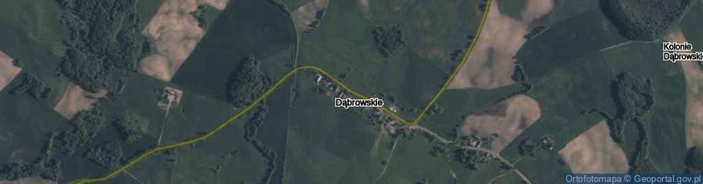 Zdjęcie satelitarne Dąbrowskie ul.