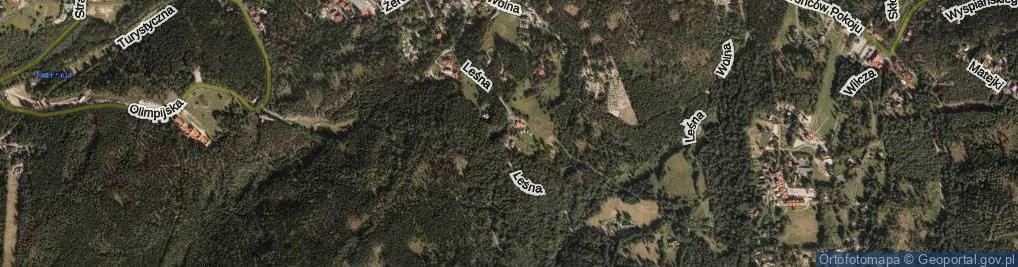 Zdjęcie satelitarne Leśna
