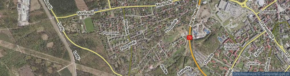 Zdjęcie satelitarne Pszczelnik