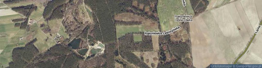 Zdjęcie satelitarne Rakoniewice