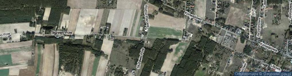Zdjęcie satelitarne Rożno-Parcele ul.