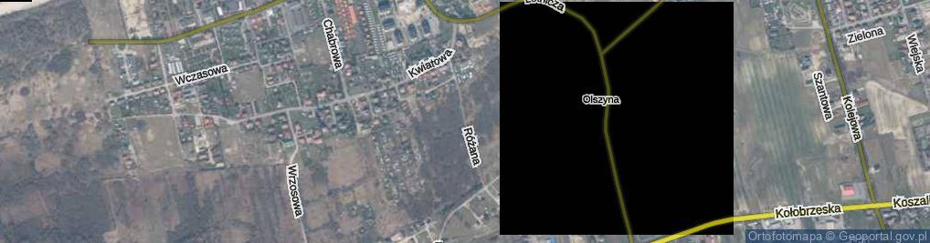 Zdjęcie satelitarne Różana ul.