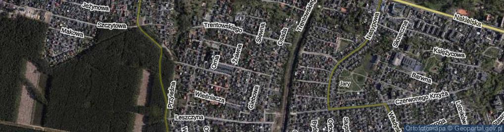 Zdjęcie satelitarne Siewna