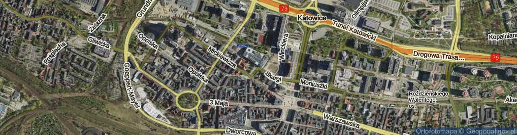 Zdjęcie satelitarne Skargi Piotra, ks.
