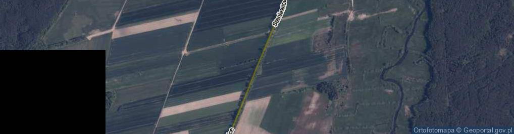 Zdjęcie satelitarne Staniewice