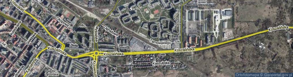 Zdjęcie satelitarne Tarnowskiego Jana