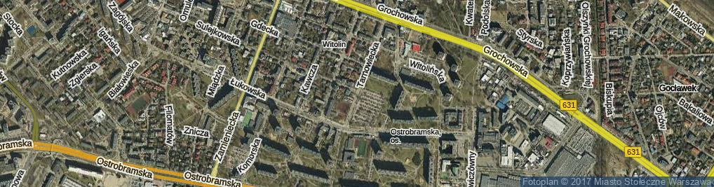 Zdjęcie satelitarne Tarnowiecka ul.