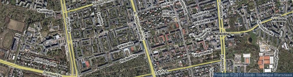Zdjęcie satelitarne Wiktorska ul.