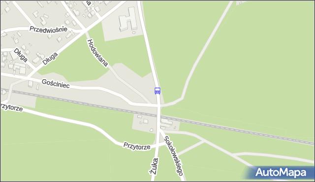 Przystanek Wielgowo nż 11. ZDiTM Szczecin - Szczecin na mapie Targeo