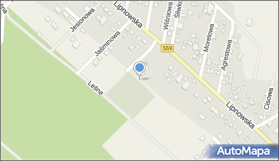 Cmentarz, Lipnowska, Maszewo Duże 09-400 - Cmentarz