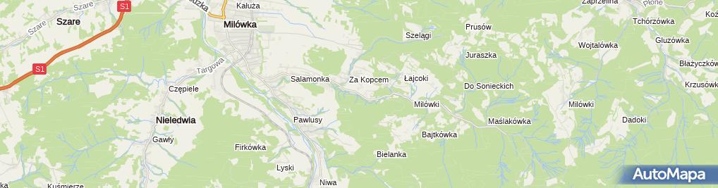 Zdjęcie satelitarne Leśny Gród