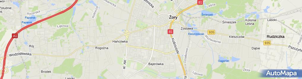 Zdjęcie satelitarne Dom Dziennego Pobytu