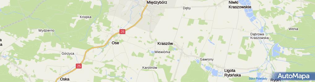 Zdjęcie satelitarne Kraszów