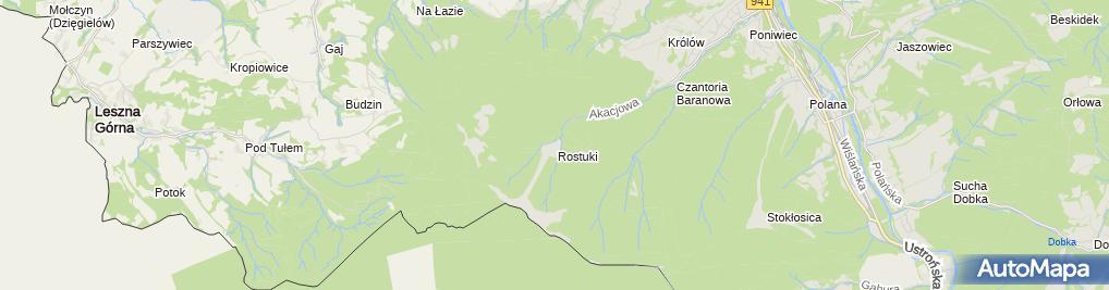 Zdjęcie satelitarne Wypożyczalnia sprzętu - wyciąg Poniwiec