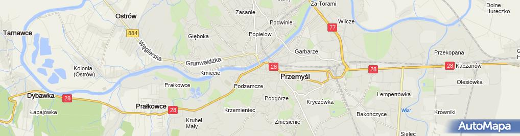 Zdjęcie satelitarne Karpacka