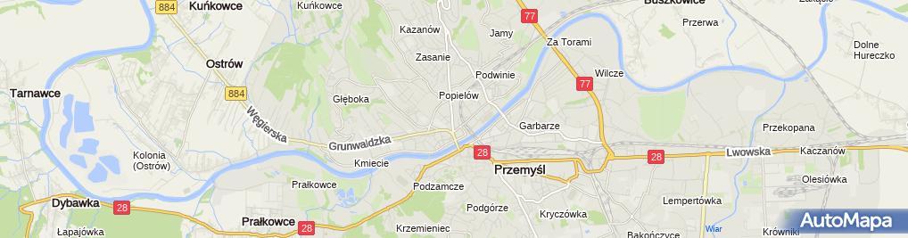 Zdjęcie satelitarne Piramida