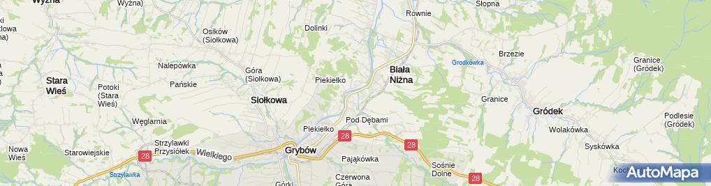 Zdjęcie satelitarne Ochotnicza Straż Pożarna Biała Niżna
