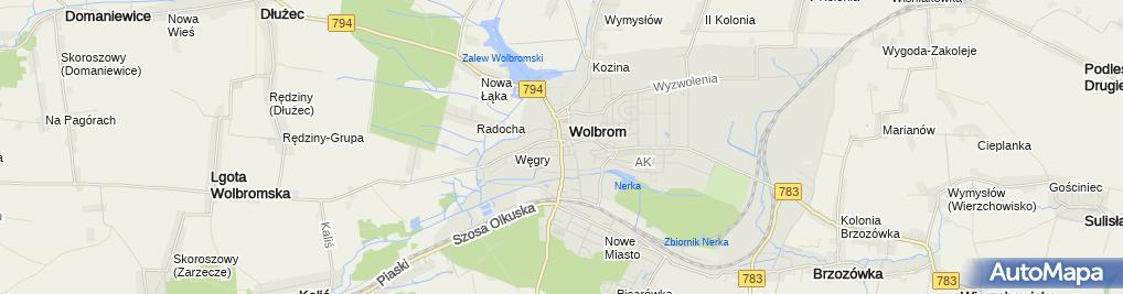 Zdjęcie satelitarne Urząd Miasta i Gminy Wolbrom