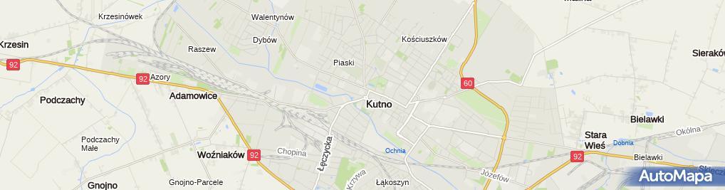 Zdjęcie satelitarne Dworek modrzewiowy