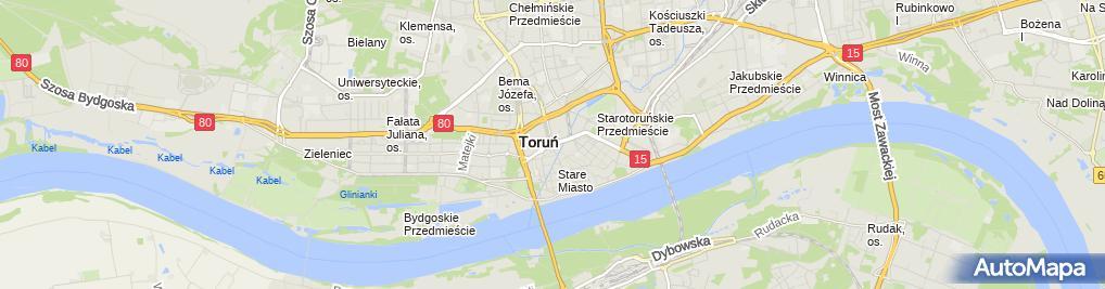 Zdjęcie satelitarne Torun Pomnik Poleglych2