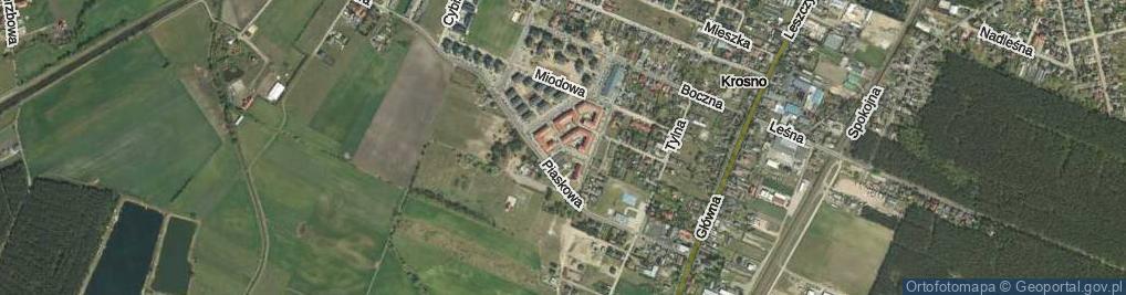 Zdjęcie satelitarne Osiedle Olszynka os.