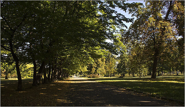 Park Skowroni, 50-538 Wrocław, Ślężna